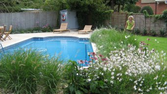 Swimming Pool Garden